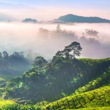 Du học Malaysia: Điểm Đến Lý Tưởng với Chi Phí Thấp (phần 1)